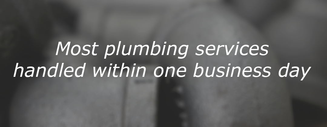 Most plumbing services handled withing one business day